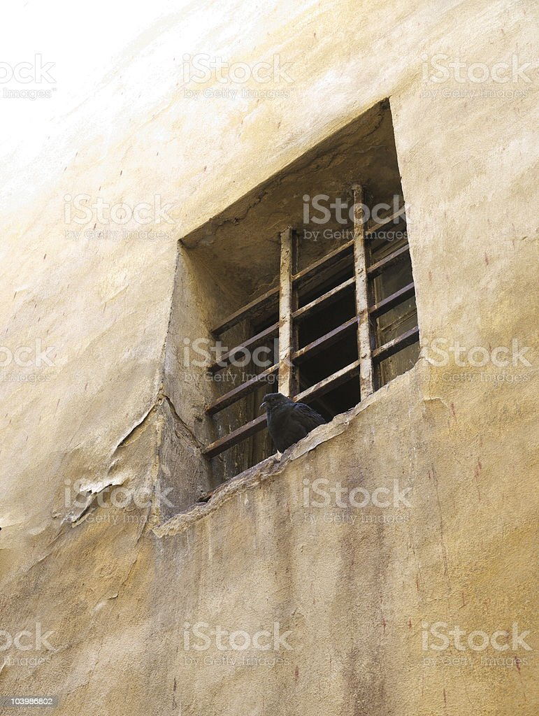 Window in the wall barred. royalty-free stock photo