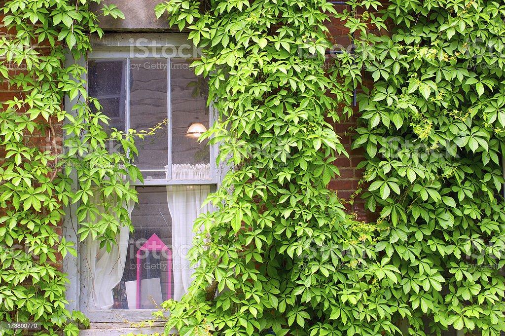 Window of historic house stock photo