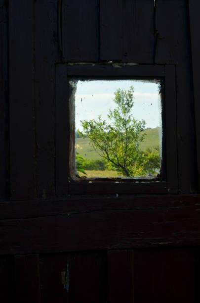 Fenster zur Welt – Foto