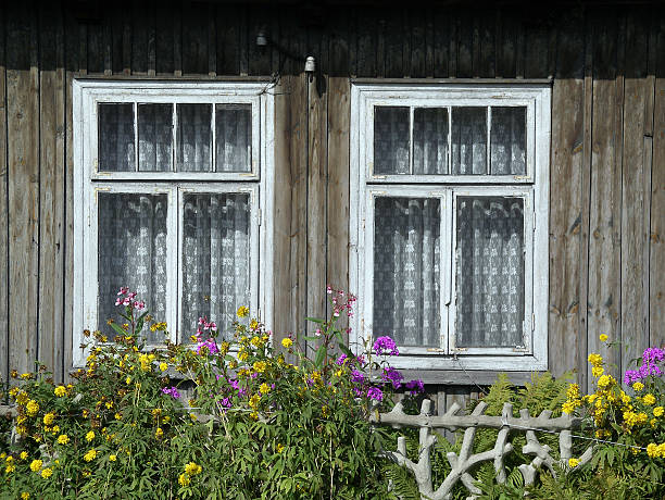 Window pair stock photo