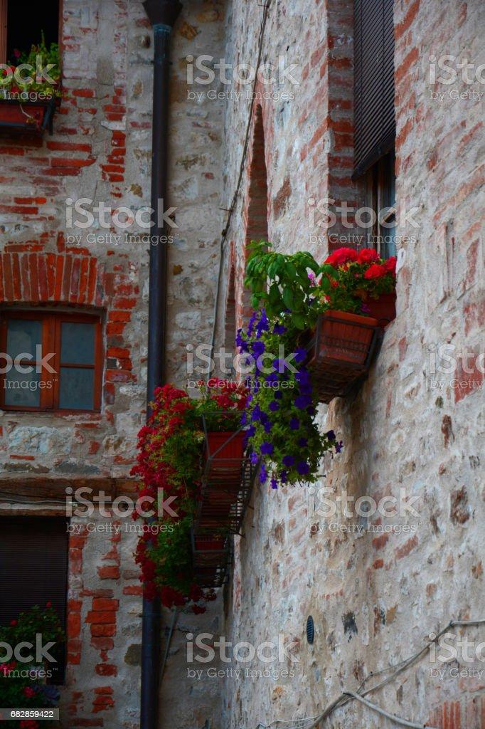 Fenster Lizenzfreies stock-foto