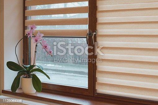 Interior detail, cozy home