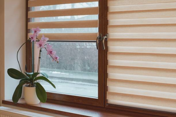 window roller, duo system day and night - blinds stock pictures, royalty-free photos & images