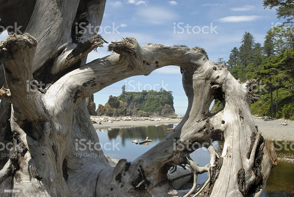 Window to Washington State Coastline royalty-free stock photo