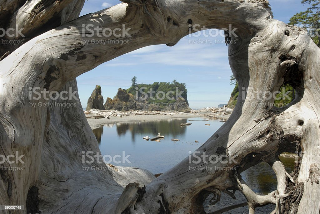 Window to Washington State's Coastline royalty-free stock photo