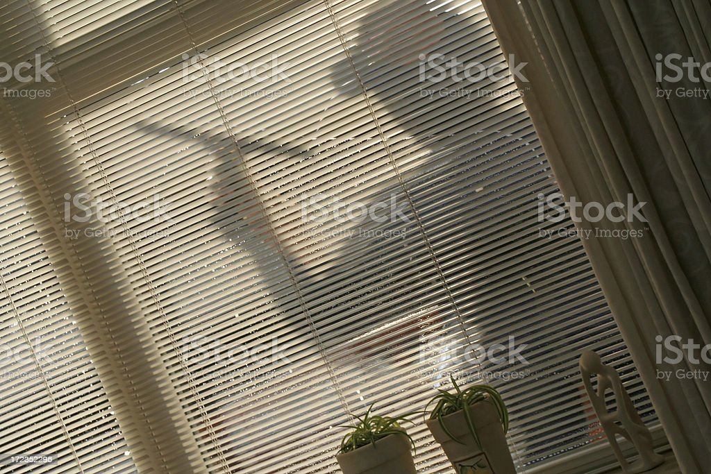 Window washer # 1 royalty-free stock photo