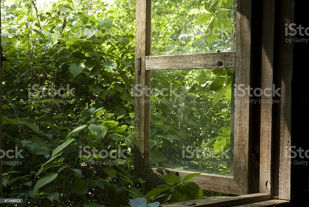 Window with a View royalty-free stock photo