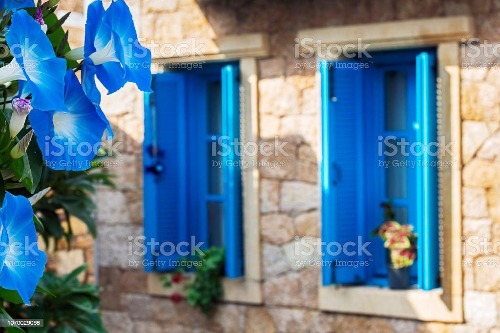 Janela com flor de Trepadeira azul - foto de acervo