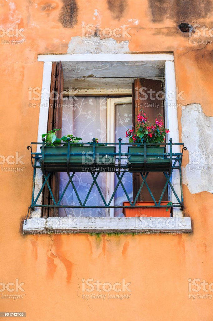 Window with flower pots royalty-free stock photo