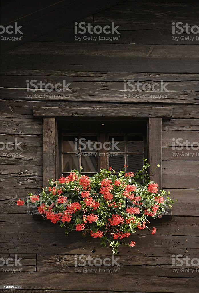 Window with flowers in Switzerland royalty-free stock photo
