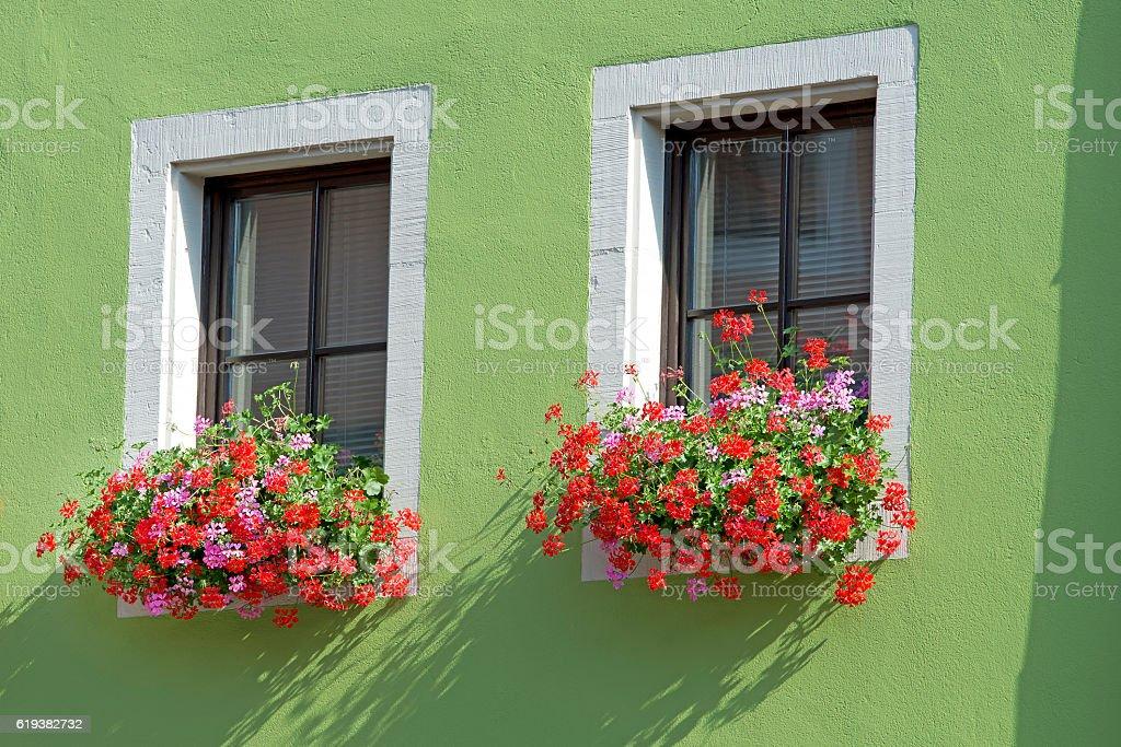 Window with geranium planter stock photo
