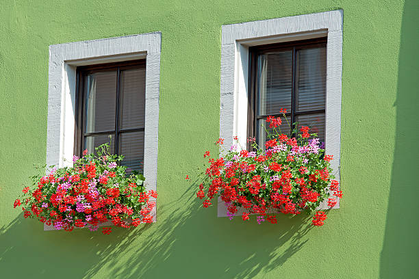 Window with geranium planter stock photo
