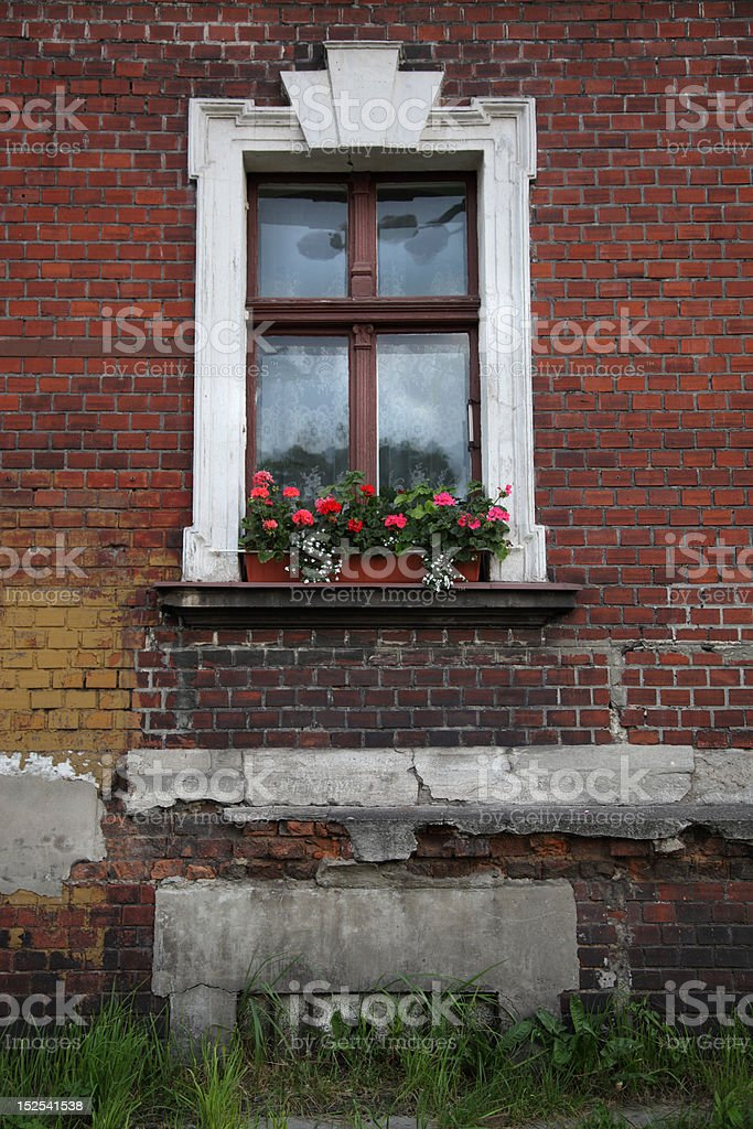 window with red flowers royalty-free stock photo