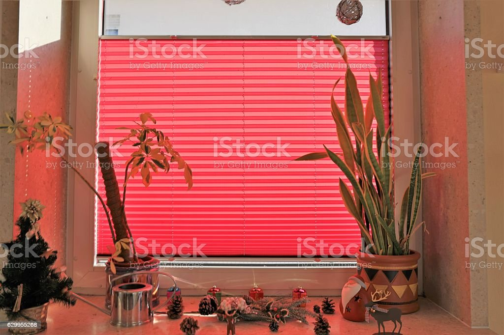 Window with red pleating stock photo