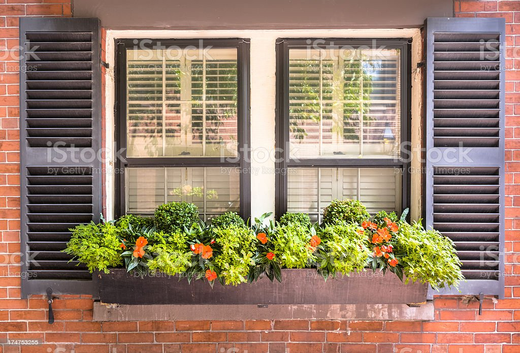 Window with Shutters and Flower Box stock photo