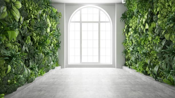 Window with Vertical Garden Corridor stock photo