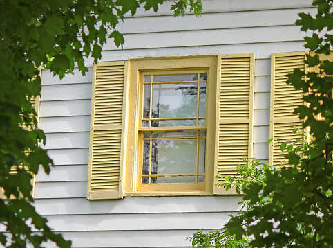 Window with Yellow Shutters in frame of green leaves