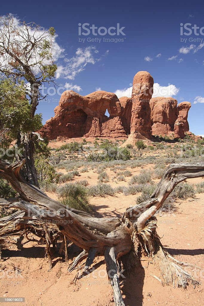 Windows Section at the Arches Nationalpark royalty-free stock photo