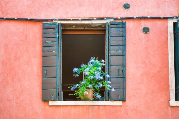 Fenster mit Blumen im alten Haus – Foto