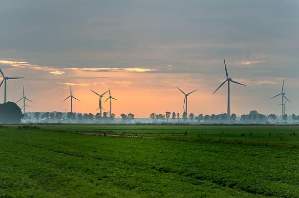 Windpark near Swifterband, Holland stock photo