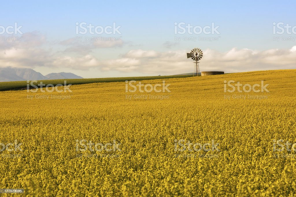 windpump royalty-free stock photo