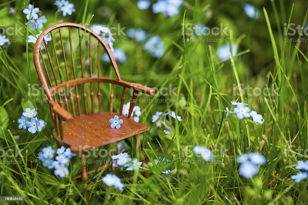 Windsor Chair in the Grass royalty-free stock photo