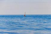 Lazurne, Ukraine - July 19, 2020: Windsurfing. Surfer exercising in the Black sea. Recreational water sports during idyllic summer vacation