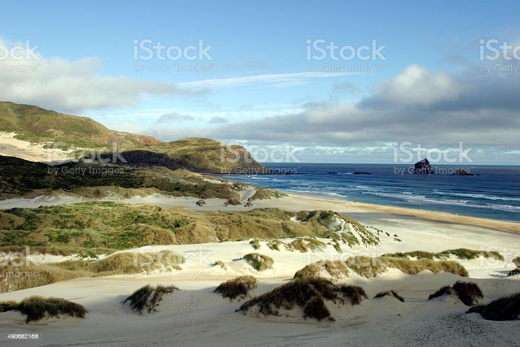 Windgepeitschte Dünen am Strand in South Island New Zealand – Foto