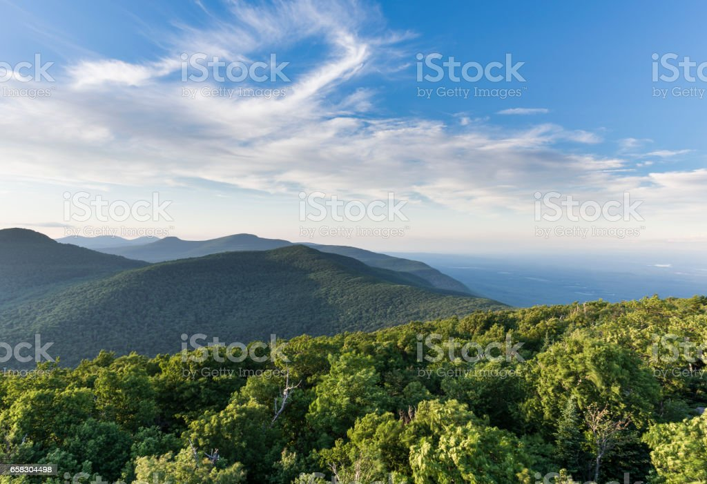 Windswept Trees in the Catskill Mountains of New York stock photo