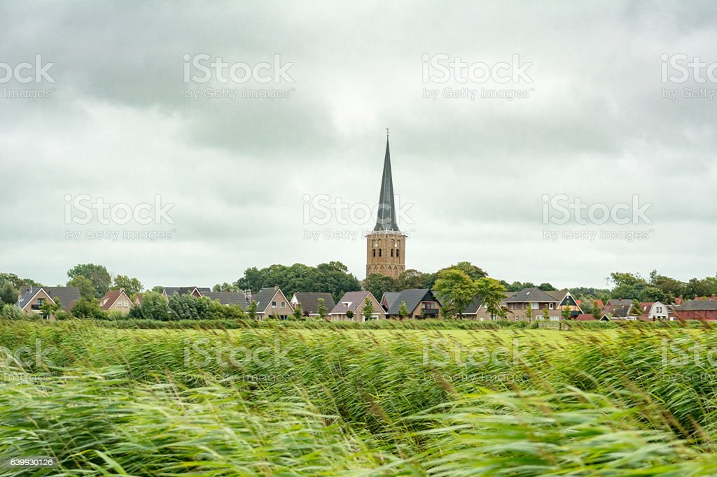 Windswept typical dutch landscape of the north of the netherlands stock photo