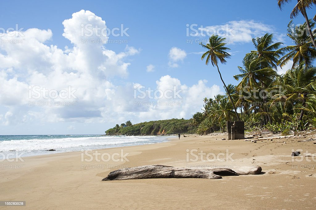 Windy Day On Ministers Bay royalty-free stock photo