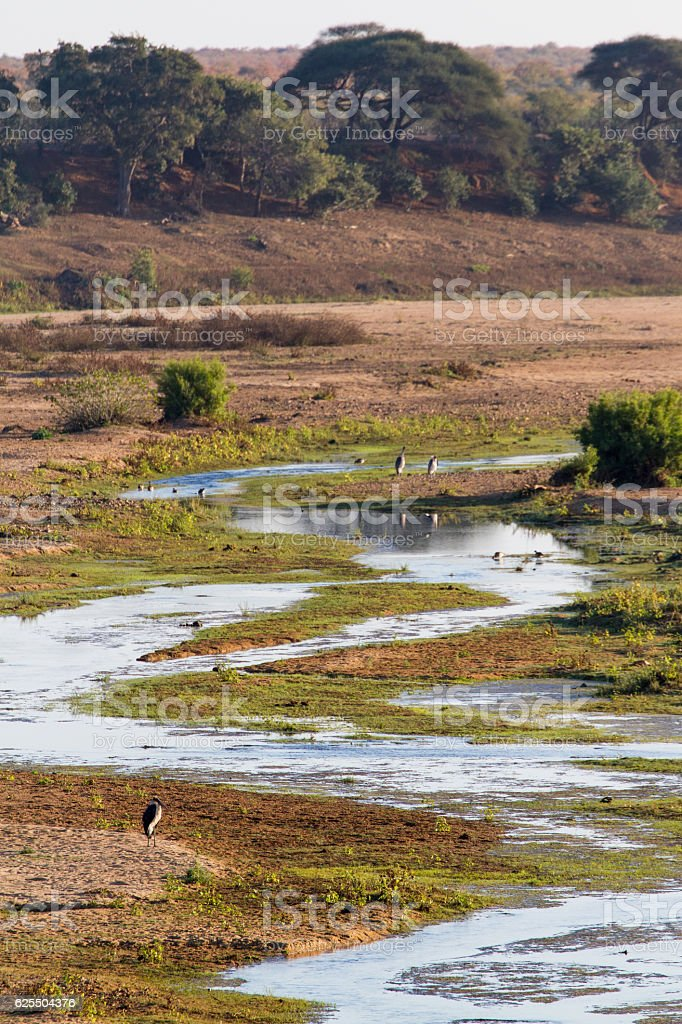 Windy Letaba River Trickle stock photo