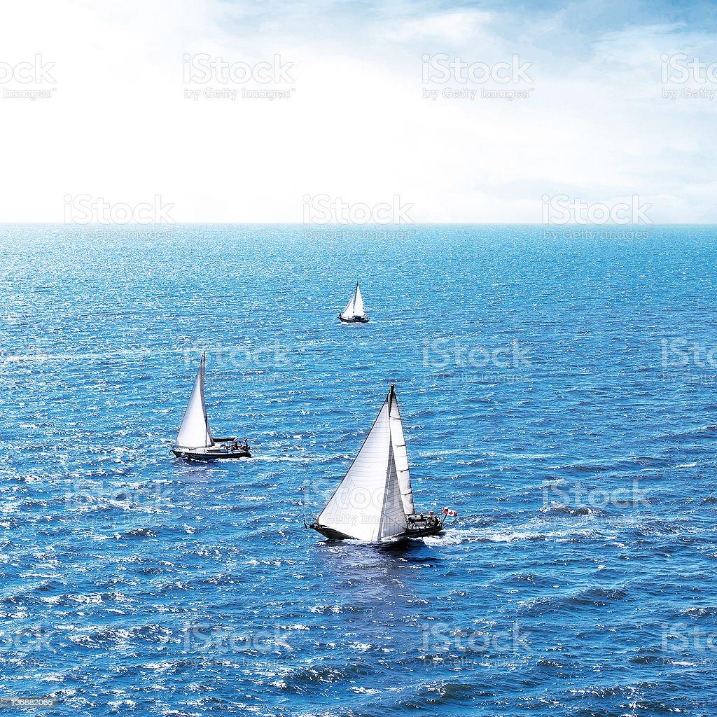 windy sailboats royalty-free stock photo