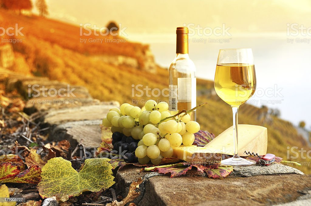 Wine and grapes against Geneva lake royalty-free stock photo