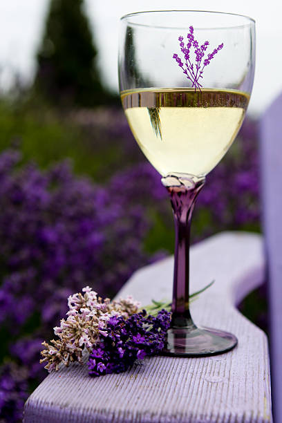 Wine and Lavender stock photo