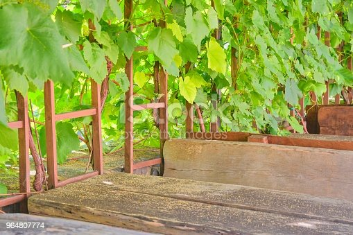 619246768 istock photo Wine background and benches. View on wine cellars in Europe. Czech Republic, South Moravia 964807774