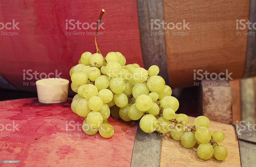 Wine barrels and grapes stock photo