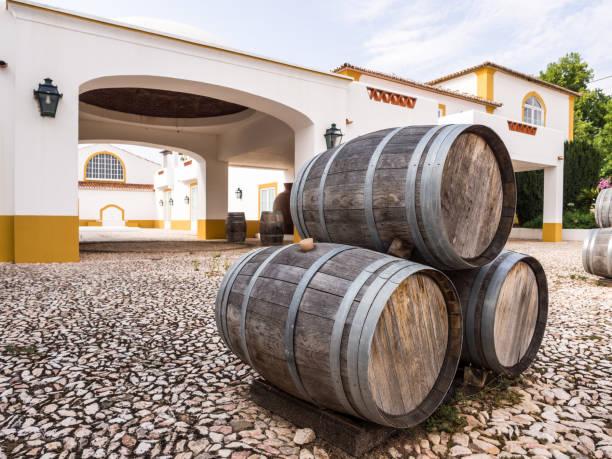 wine barrels in alentejo wine region, portugal - setubal imagens e fotografias de stock
