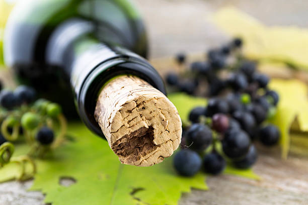 wine bottle and bunch of grapes stock photo