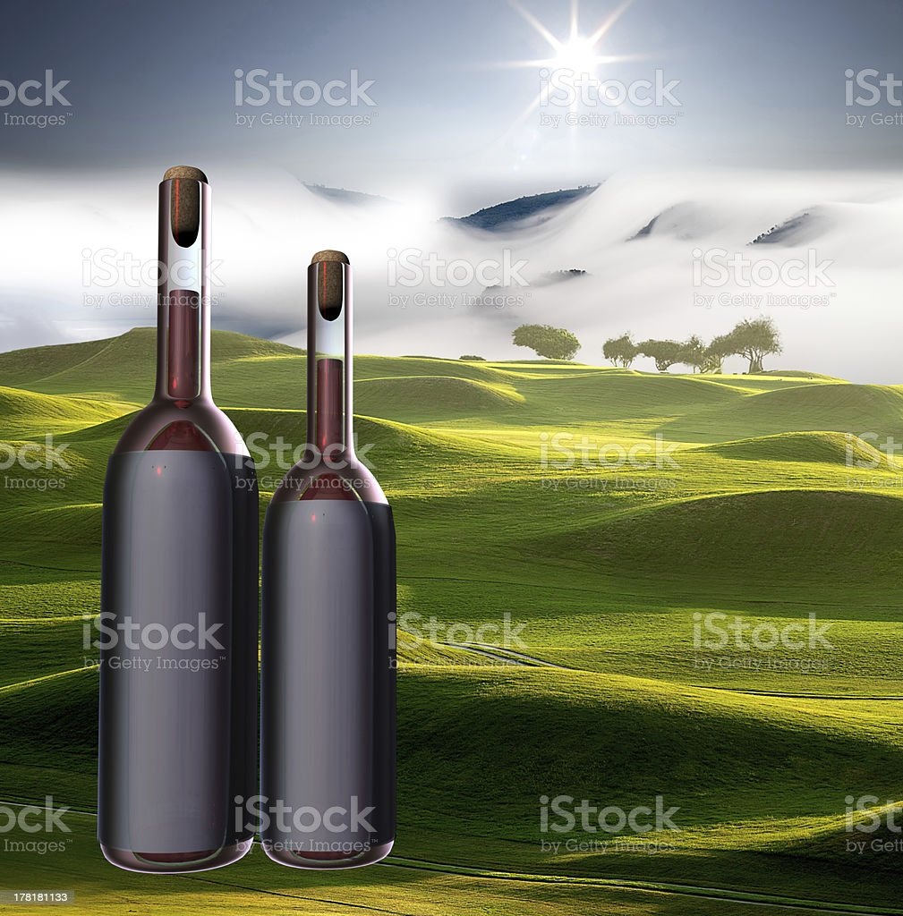 Wine bottle with nice view royalty-free stock photo
