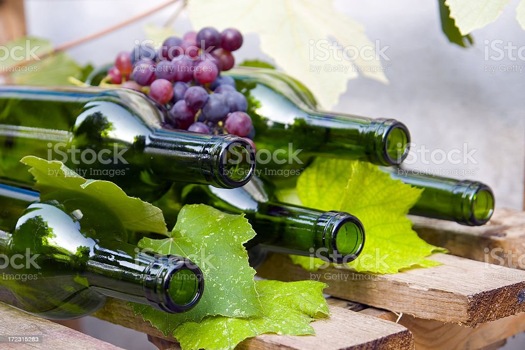 Wine bottles. royalty-free stock photo