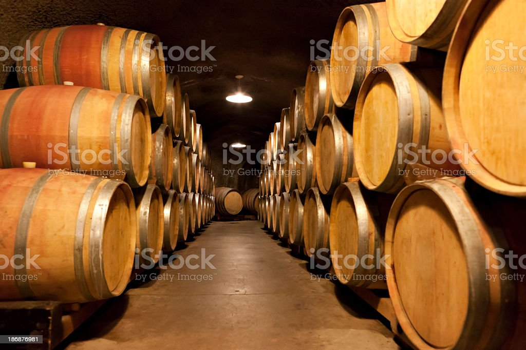 Wine cave full of aging barrels royalty-free stock photo