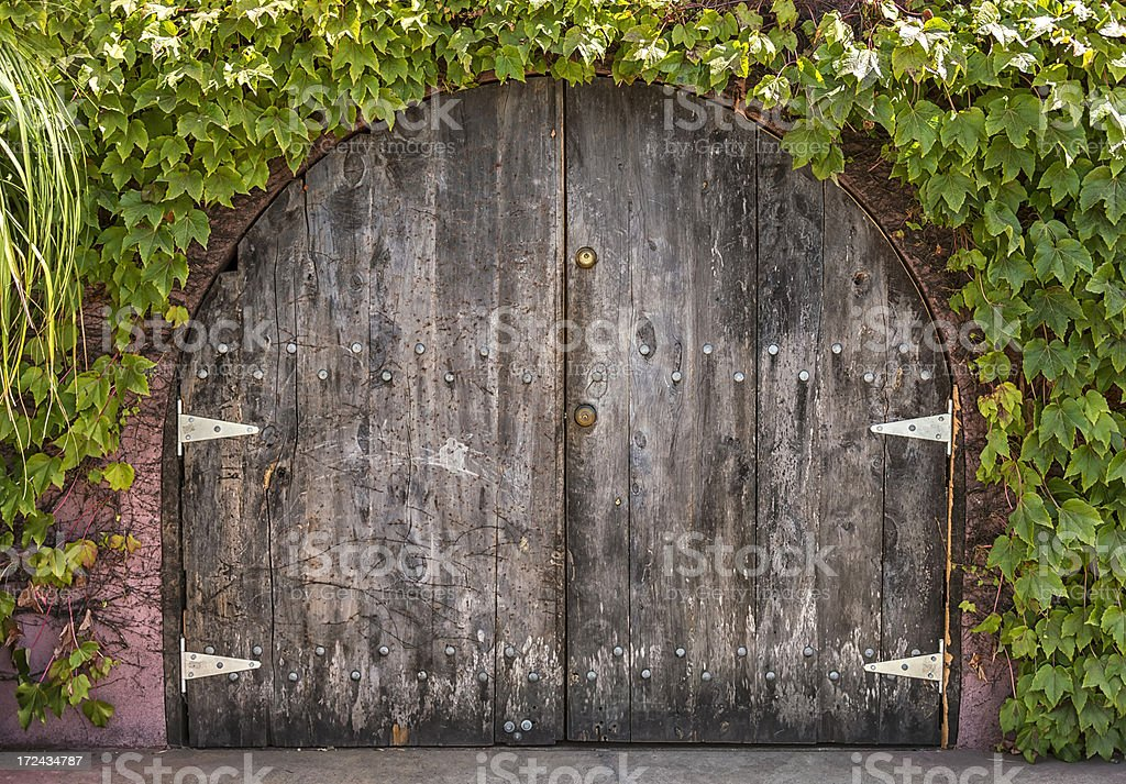 Wine Cellar Doors stock photo