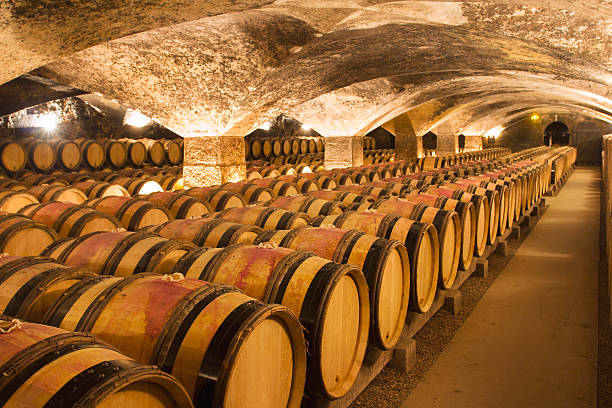 Wine cellar A big and ancient winecellar cellar stock pictures, royalty-free photos & images