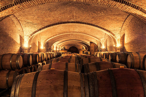 Wine cellar Multiple cask in a cellar during wine aging process cellar stock pictures, royalty-free photos & images