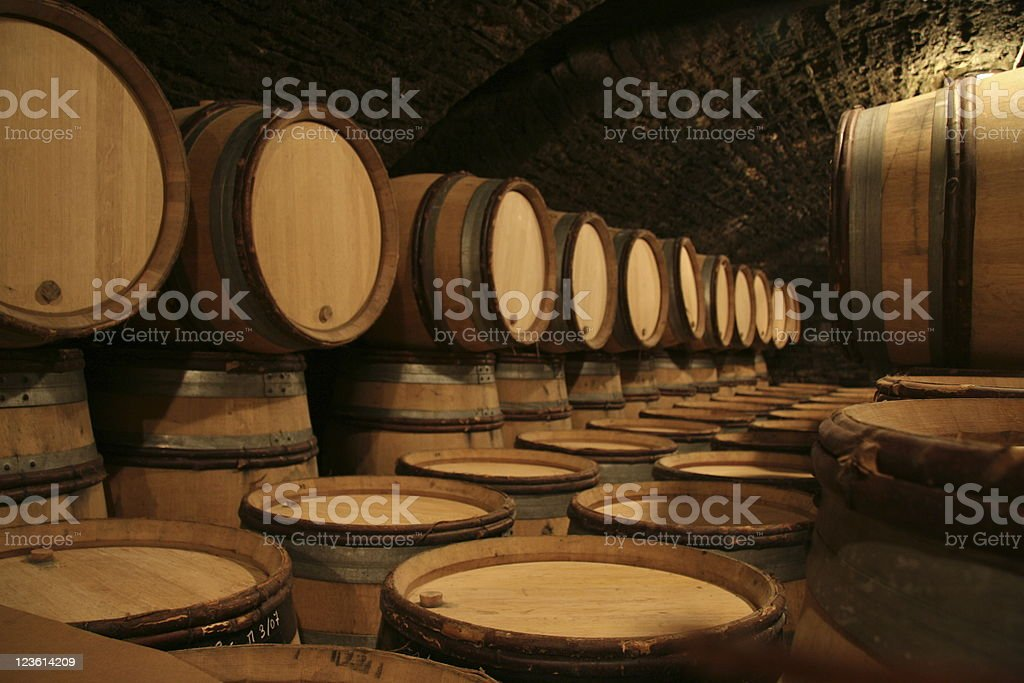Wine cellar with oak barrels stock photo