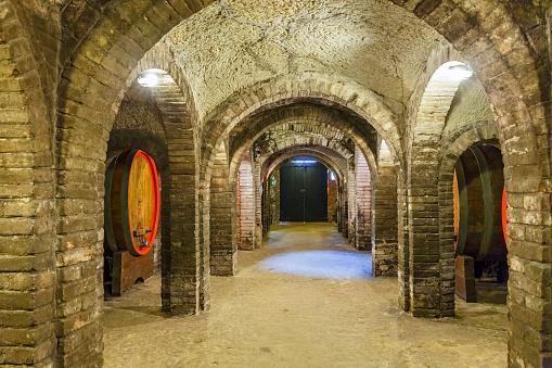Wine cellar with wine barrels and a door