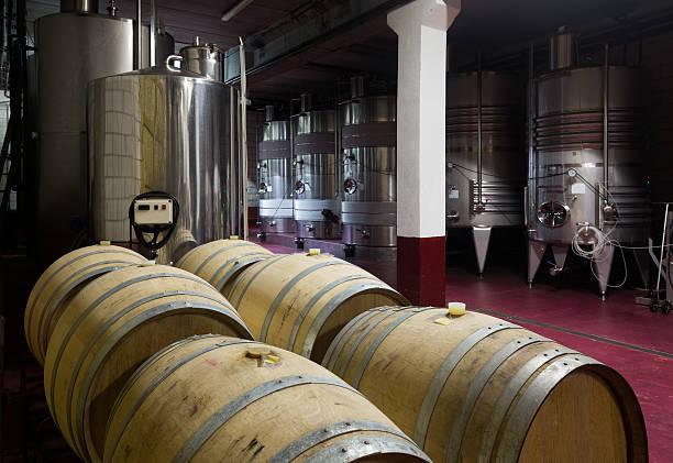 wine cellar with  wooden and stell barrels - keller organisieren stock-fotos und bilder