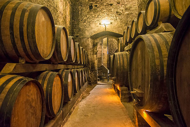 Wine cellars Builing basement with wine barrels. cellar stock pictures, royalty-free photos & images