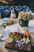 istock wine, cheese, ham and fruits served on wooden cutting board. Summer outdoor garden party 1125373238